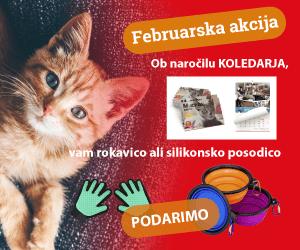 Februarska akcija: koledar + darilo