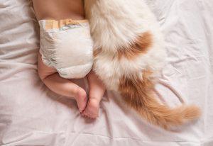 Ob prihodu novega člana družine domov svetujemo, naj se mamica posveti nekaj minut mački in ju s tem pokaže, da je še zmeraj izredno pomemben del njenega življenja.