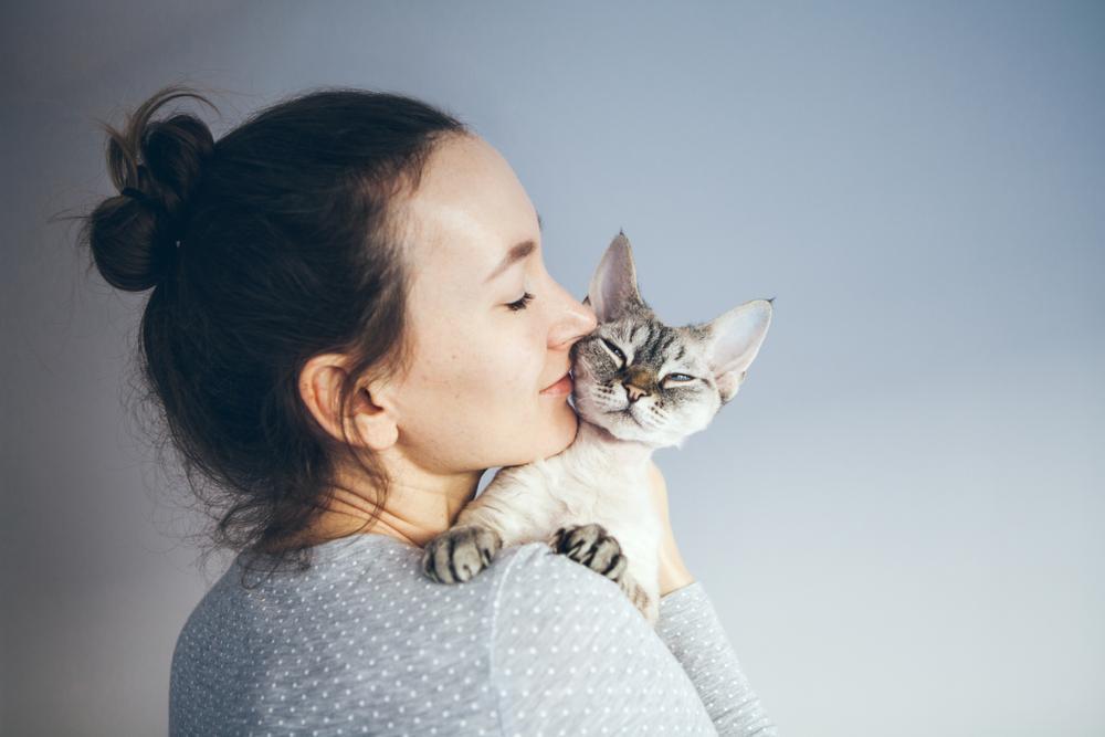 Tudi mačke imajo lahko rade svojo družino, le drugače izkazujejo ljubezen. Tukaj je nekaj primerov, na katere načine vam vaša hišna ljubljenka lahko sporoča, da vas ima rada.