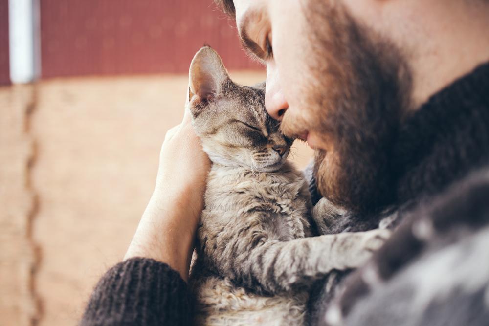 Kadar je mačka osamljena, to najpogosteje pokaže s spremembami v vedenju. Žival lahko osamljenost pokaže tako, da kar naenkrat mijavka veliko več, kakor sicerali pa, da je, kadar ste doma, veliko več okoli vas.